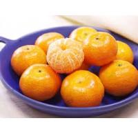 新鲜水果-沙塘桔/每份1磅左右