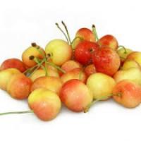 新鲜水果-黄樱桃/磅