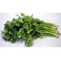 蔬菜类-香菜/每扎