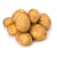 蔬菜类-土豆/每份
