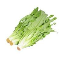 蔬菜类-油麦菜/每袋