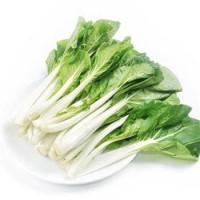 白菜芯/每盒1磅左右
