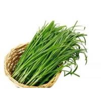 蔬菜类-韭菜/每袋 300克左右