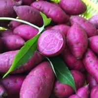 蔬菜类-紫心番薯/每份 1磅左右
