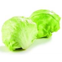 蔬菜类-生菜/每颗